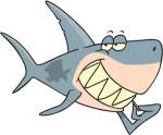 Акулы форекс